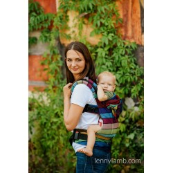 LennyGo Ergonomic Carrier, Toddler Size, broken-twill weave 100% cotton - CAROUSEL OF COLORS